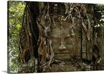 Stone carving, Angkor, Cambodia