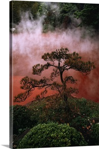 Blood Pond Hell Beppu Kyushu Island Japan Wall Art