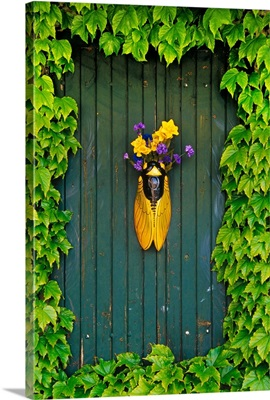 A Flower Vase Surrounded By Vines, Provence, France