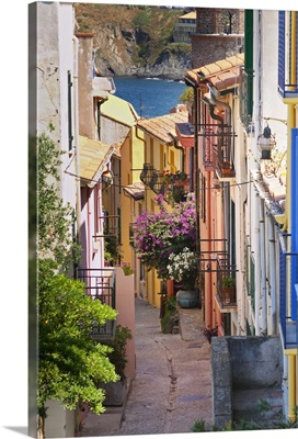 A Narrow Street In The Old Town, Collioure, Roussillon, France