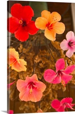 Barbados, North East Coast, Flower Arrangement