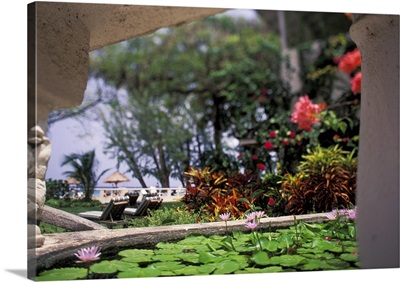Barbados. Tropical blossoms and pond at the entrance to the Coral Reef Club