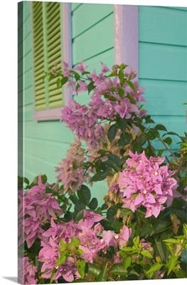 Barbados, West Coast, Holetown, The Chattel Village