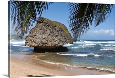 Bathsheba Beach Barbados, Caribbean