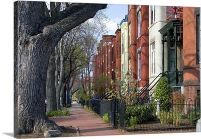 Brick row houses on Capitol Hill in Washington, D.C