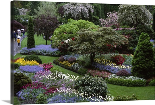 Butchart Gardens, Victoria, Vancouver Island, Canada Wall Art ...