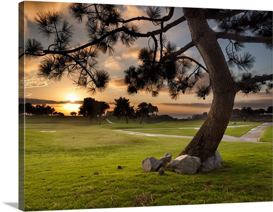 California, La Jolla, Sunset at Golf Course Wall Art, Canvas Prints ...