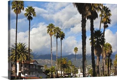 California, Southern California, Santa Barbara, harborfront and beach