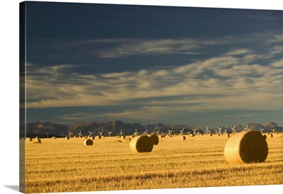 Canada, Alberta, Crowsnest Pass Area, Cowley Ridge Wind Farm Landscape with Hayrolls