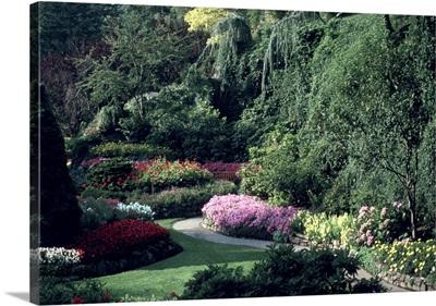 Canada, British Columbia, Victoria Flowers at Butchart Gardens