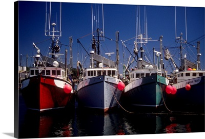 Canada, New Brunswick, Grand Manan, North Head Harbor, commercial fishing boats
