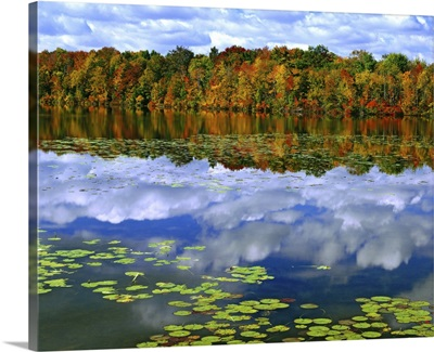 Canada, Ontario. Autumn-colored trees reflect in Park Haven Lake