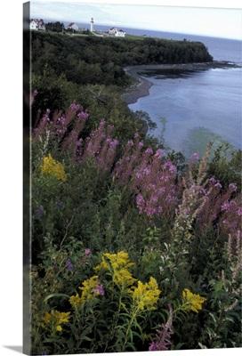 Canada, Quebec, Gaspe Peninsula (Gaspesie). Riviere Madeleine coast