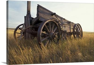 Canada, Saskatchewan, An old horse-drawn cart in a field near Maple Creek