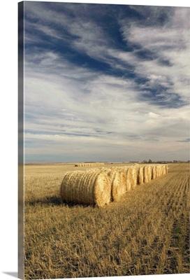 Canada, Saskatchewan, Craik, Hayrolls, Autumn and Prairie Landscape