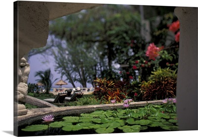 Caribbean, Barbados. Tropical blossoms, Coral Reef Club Entrance