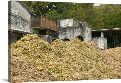 Caribbean, Grenada, Tivoli, River Antoine Rum Distillery, Residue Sugar Cane