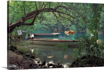 Caribbean, Jamaica, Port Antonio. Blue Lagoon