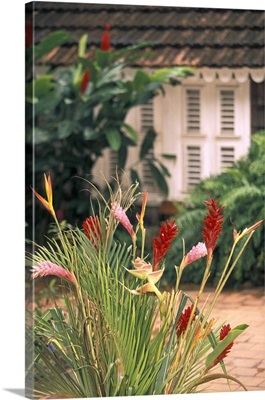 Caribbean, Martinique Le Francois; Habitation Clement, rum plantation; tropical flowers