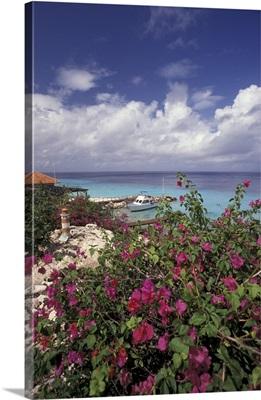 Caribbean, Netherland Antilles, Curacao, The Habitat Resort