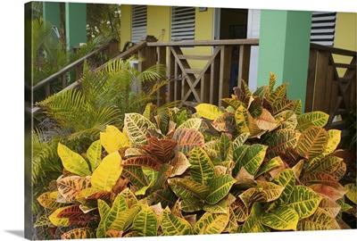 Caribbean, Puerto Rico, Vieques. Hotel