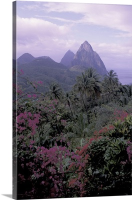 Caribbean, St. Lucia, Soufriere Le Haut Plantation, view of Pitons from above Soufriere