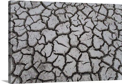 Cayman Islands, Little Cayman Island, Cracked mud at Booby Pond Preserve