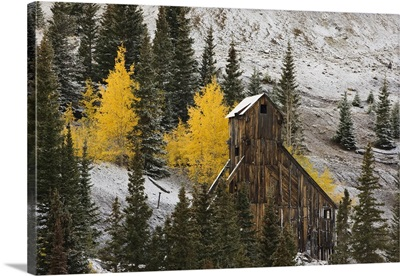 Colorado, Uncompahgre National Forest, An abandoned mine structure