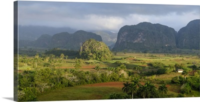 Cuba, Vinales, valley of Vinales with limestone formations in background