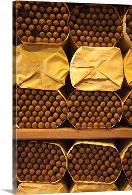 Dominican Republic, Santo Domingo, Cohiba cigars