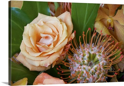 Flower arrangement with rose, orchid, and protea blossoms
