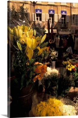 France, Provence, Bouches, Du, Rhone, Aix, En, Provence, Flower Market Detail