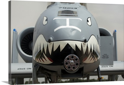 Front of an A-10 Thunderbolt II warplane painted with a shark face
