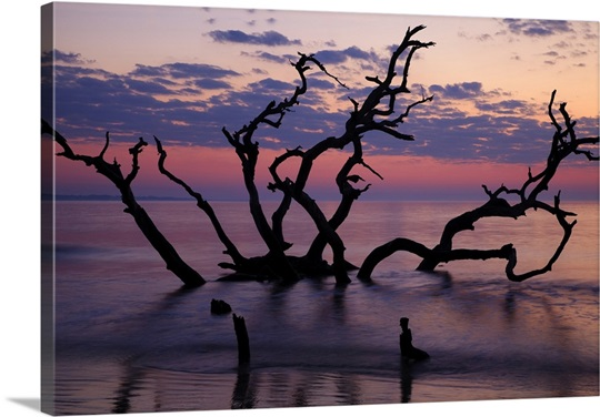 jekyll island big and beautiful singles The story behind 'the creature from jekyll island,' the anti-fed conspiracy theory bible a stretch of white-sand beaches and beautiful landscape off the coast.