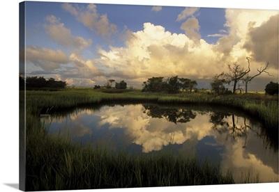 Georgia, Savannah, Chimney Creek in morning light