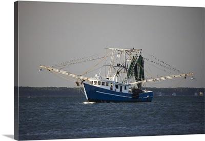 Georgia, Savannah, Shrimp boat along the coast