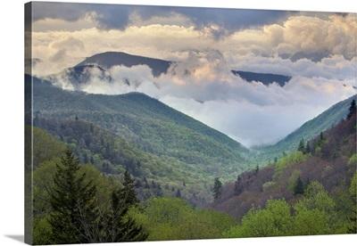 Great Smoky Mountains National Park, North Carolina