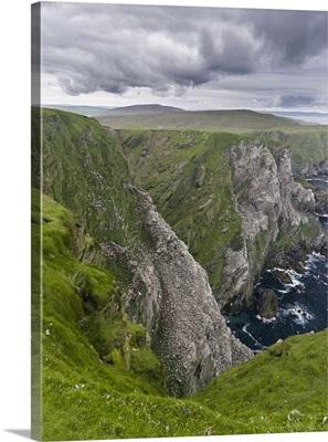 Hermaness National Nature Reserve on Unst Island, Scotland, Shetland Islands