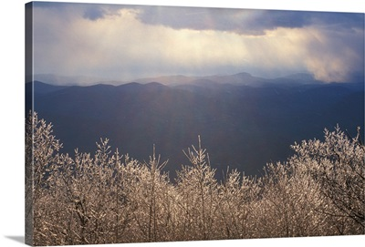Ice coats the trees on Springer Mountain in early spring. Georgia