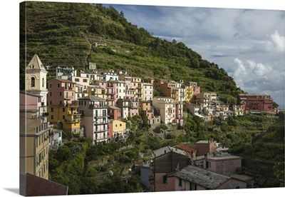 Italy, Cinque Terre, Manarola. View of housing amidst the steep hillsides