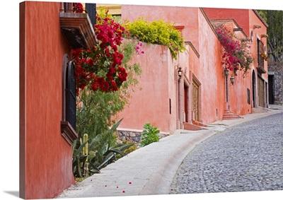 Mexico, Guanajuato state, San Miguel de Allende, colorful neighborhood