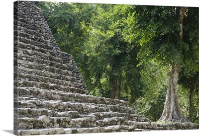 Mexico, Quintana Roo, Yucatan Peninsula near Costa Maya, Kohunlich Mayan Ruins