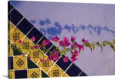 Mexico, Yucatan, Merida, tiled wall near the pool at the Hotel MedioMundo