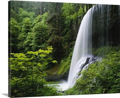 Middle North falls, Silver Falls State Park, Oregon