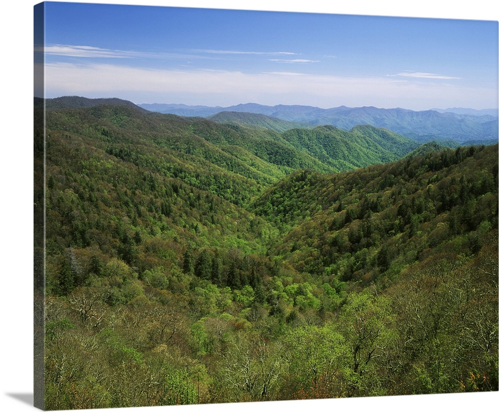 NC, Great Smoky Mountains National Park, Early spring view of Thomas Divide
