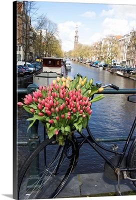Netherlands, South Holland, Amsterdam