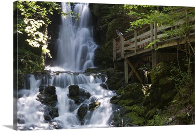 New Brunswick, Canada, Dickson Falls in Fundy National Park