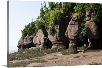 New Brunswick, Canada. Hopewell Rocks and The Ocean Tidal Exploration Site