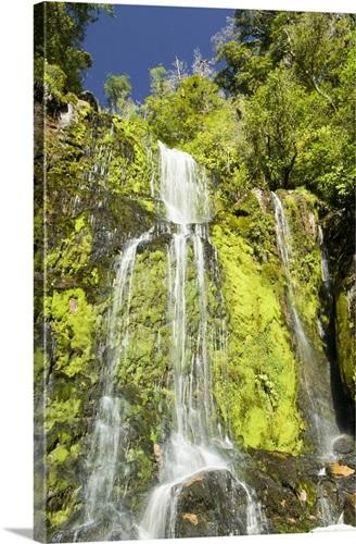 New Zealand, South Island, Mangatini Falls along Charming Creek ...