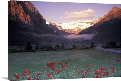 North America, Canada, Alberta, Banff, Lake Louise morning and poppies